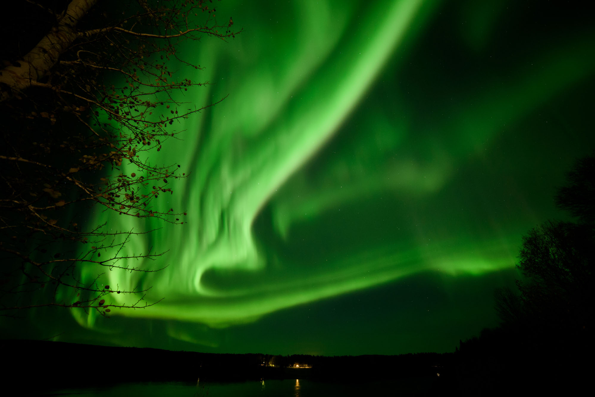 Northern lights dancing in the sky.