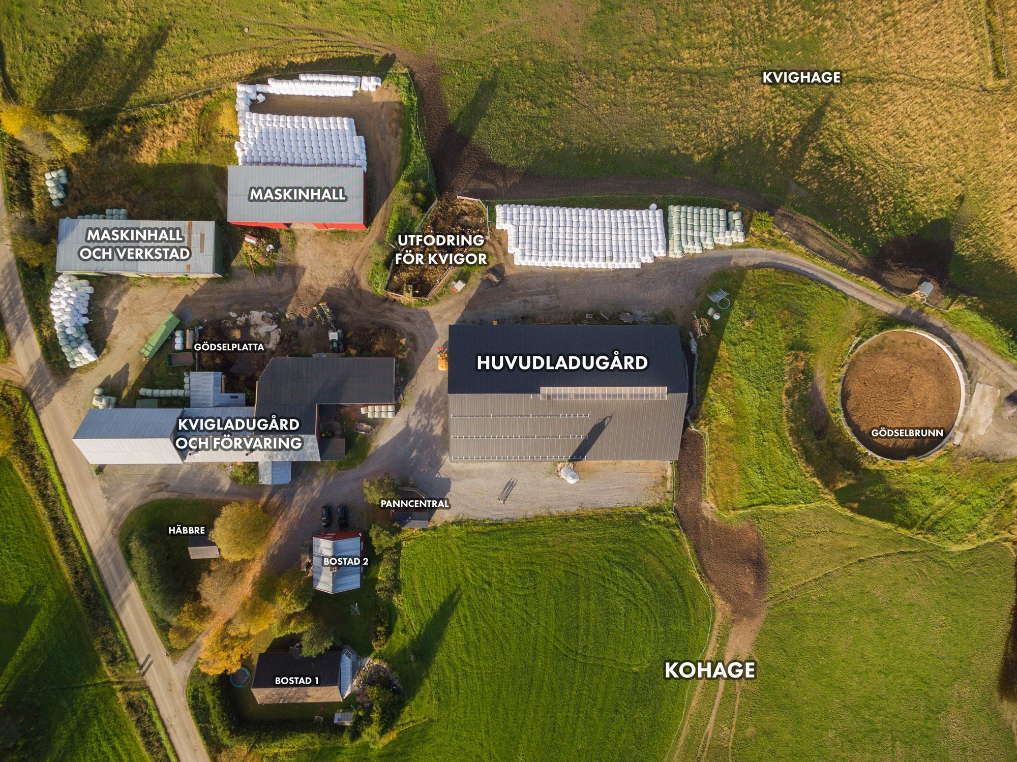 Rödåsens gård - översikt